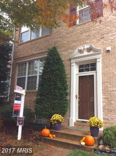 Alexandria Townhouse For Sale: 6248 Taliaferro Way
