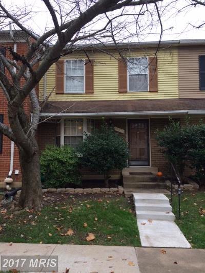 Oakton Rental For Rent: 10370 Granite Creek Lane