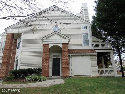 Fairfax, Fairfax City Condo For Sale: 7000 Ellingham Circle #41