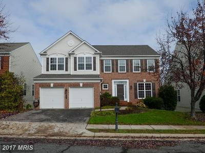 Lorton Single Family Home For Sale: 8196 Paper Birch Drive