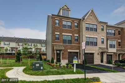 Falls Church Townhouse For Sale: 3671 Ambrose Hills Road