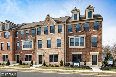 Falls Church Townhouse For Sale: 3694 Ambrose Hills Road