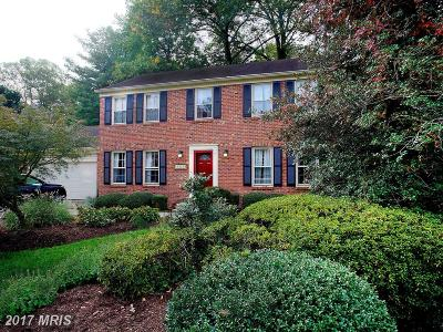 Fairfax Single Family Home For Sale: 9349 Chestnut Knolls Drive