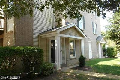 Carriage Park Rental For Rent: 11712 Scooter Lane #20