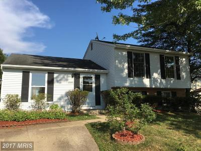 Lorton Single Family Home For Sale: 9005 Dolsie Grove Drive