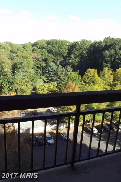 Falls Church Rental For Rent: 2230 George C Marshall Drive #1013