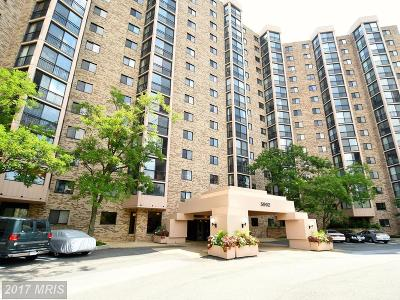 Alexandria Rental For Rent: 5902 Mount Eagle Drive #201