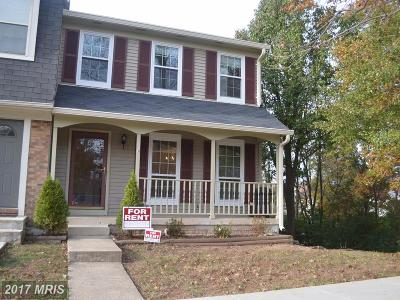 Centreville Rental For Rent: 14510 Chelsey Place