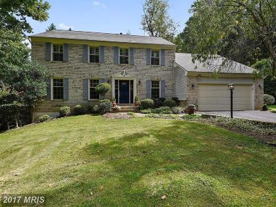 McLean Single Family Home For Sale: 1619 Linway Park Drive