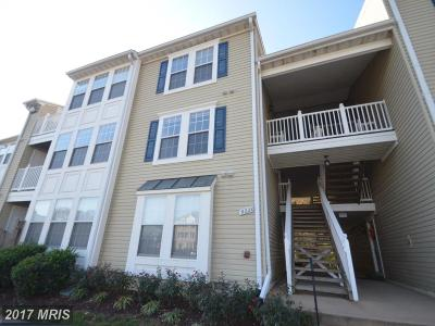 Lorton Condo For Sale: 9220 Cardinal Forest Lane #E