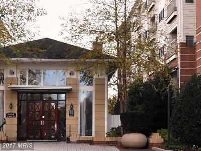 Vienna Rental For Rent: 9490 Virginia Center Boulevard #439