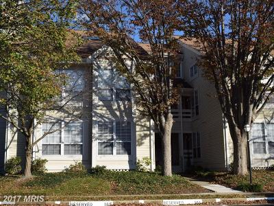Alexandria Rental For Rent: 4501 Hazeltine Court #A