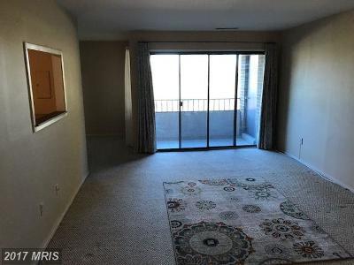 Herndon Rental For Rent: 523 Florida Avenue #21