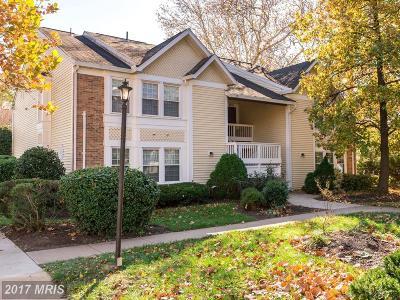 Falls Church Condo For Sale: 3424 Lakeside View Drive #10-3