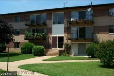 Annandale Condo For Sale: 4102 Daniels Avenue #204