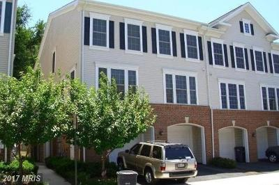 Alexandria Townhouse For Sale: 7131 Mason Grove Court #13