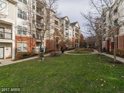 Fairfax Condo For Sale: 11329 Aristotle Drive #5-413