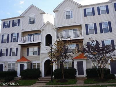 Lorton Condo For Sale: 8165 Halley Court #304