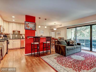 Washington, Montgomery, Fairfax Rental For Rent: 6143 Leesburg Pike #502
