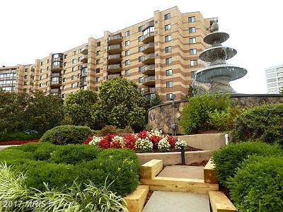 McLean Condo For Sale: 8350 Greensboro Drive #109
