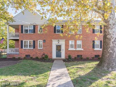Alexandria Condo For Sale: 6507 Potomac Avenue #A1