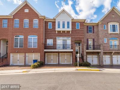Herndon Townhouse For Sale: 659 Nathaniel Chase Lane