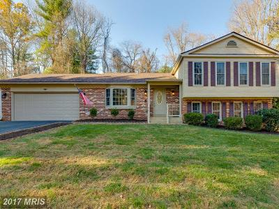 Great Falls Single Family Home For Sale: 1122 Edward Drive