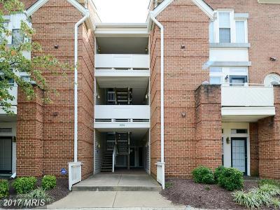 Alexandria Single Family Home For Sale: 6974 Ellingham Circle #78