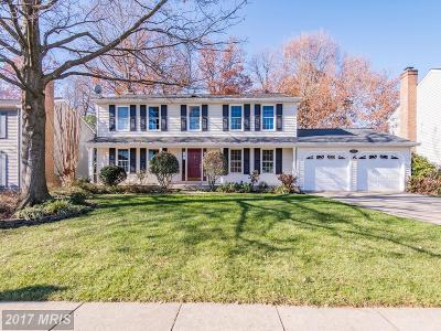 Lorton Single Family Home For Sale: 6825 Silver Ann Drive