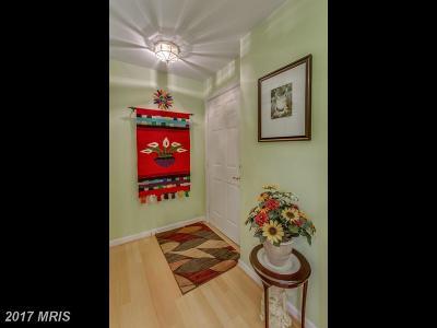 Alexandria Condo For Sale: 7520 Snowpea Court #B