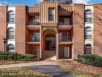 Annandale Condo For Sale: 3328 Woodburn Village Drive #32