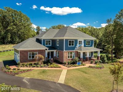 Lorton Single Family Home For Sale: 7770 Julia Taft Way