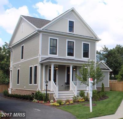 Herndon Single Family Home For Sale: 117 Vinehaven Way