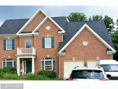 Falls Church Single Family Home For Sale: 3799 Maryalice Place