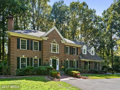 Herndon Single Family Home For Sale: 2808 Whirlaway Circle