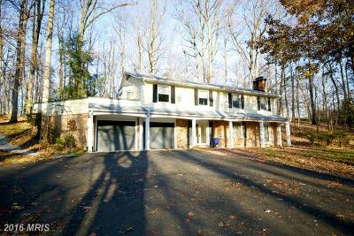 Great Falls Single Family Home For Sale: 11600 Blue Ridge Lane