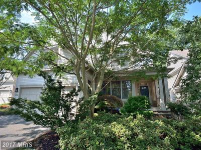 Reston Single Family Home For Sale: 1302 Red Hawk Circle