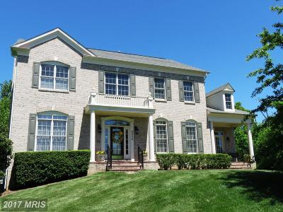 Lorton Single Family Home For Sale: 9036 Swans Creek Way