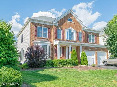 Centreville Single Family Home For Sale: 13654 Sweet Woodruff Lane