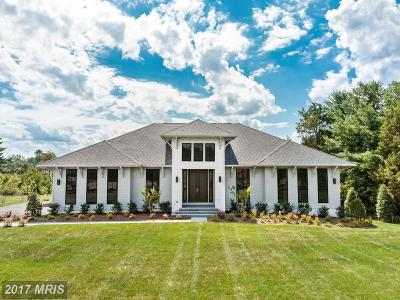 Great Falls Single Family Home For Sale: 9603 Perkins Farm Road