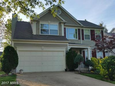 Centreville Single Family Home For Sale: 5560 Village Center Drive