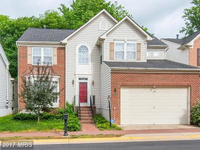 Lorton Single Family Home For Sale: 9132 Stonegarden Drive