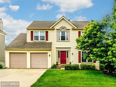 Centreville Single Family Home For Sale: 5575 Village Center Drive