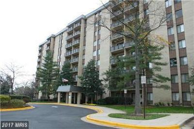 Falls Church Condo For Sale: 3101 Manchester Street #823