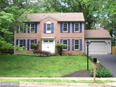 Annandale Single Family Home For Sale: 8438 Briar Creek Drive