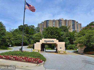 Alexandria Condo For Sale: 5901 Mount Eagle Drive #405