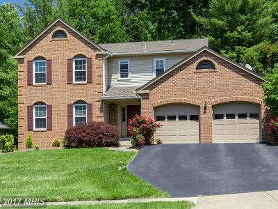 Herndon Single Family Home For Sale: 12010 Sugarland Valley Drive