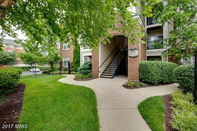 Herndon Condo For Sale: 12958 Centre Park Circle #127
