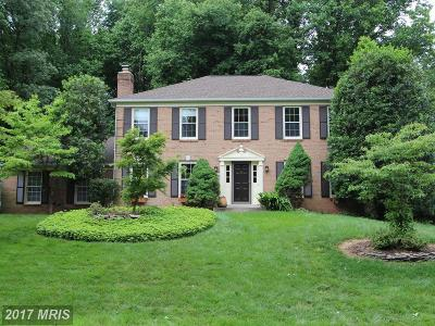 Oakton Single Family Home For Sale: 3422 Valewood Drive
