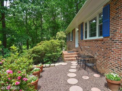 Vienna Single Family Home For Sale: 8634 Park Street